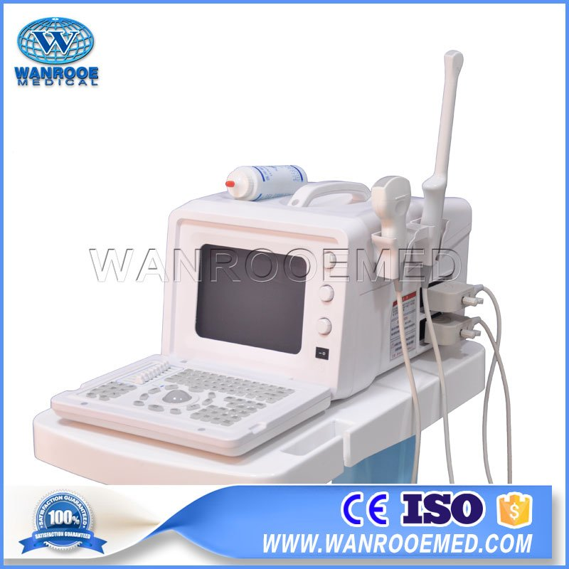 US330 Medical 3D Color Doppler B Ultrasound Machine