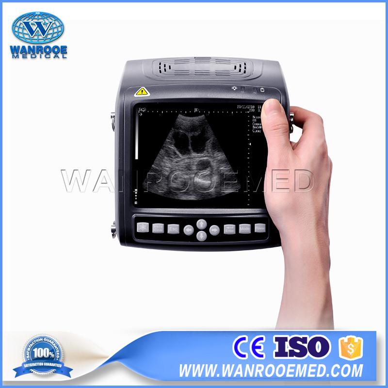 Veterinary Ultrasound, Animal Ultrasound Scanner, Vet Ultrasound Machine, Cattle Ultrasound Machine, Swine Ultrasound Machine