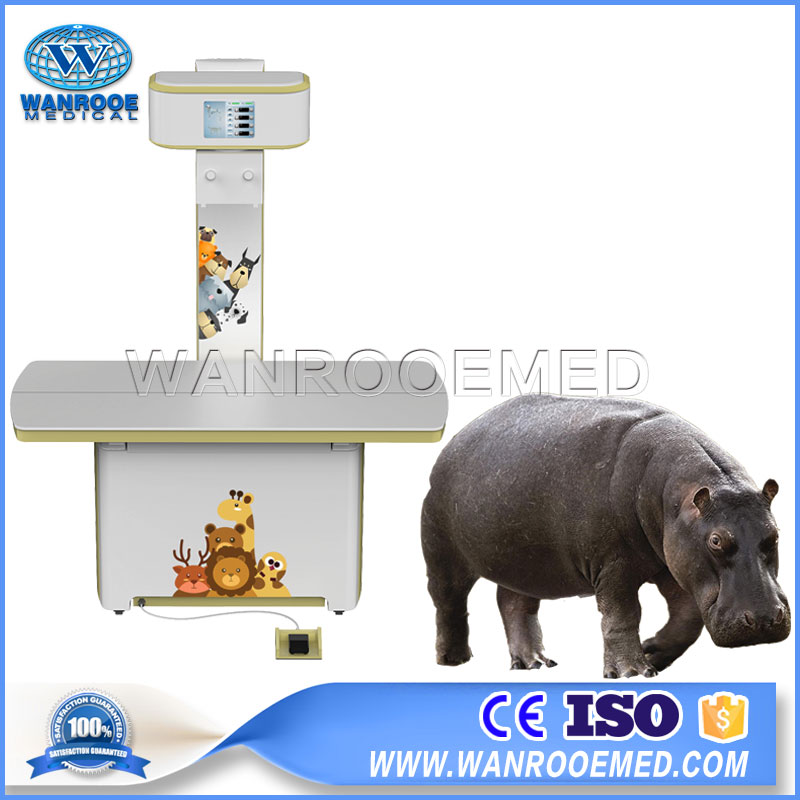 VET1800 Vet Digital Radiography System Portable Veterinary X ray Machine For Small And Big Animal